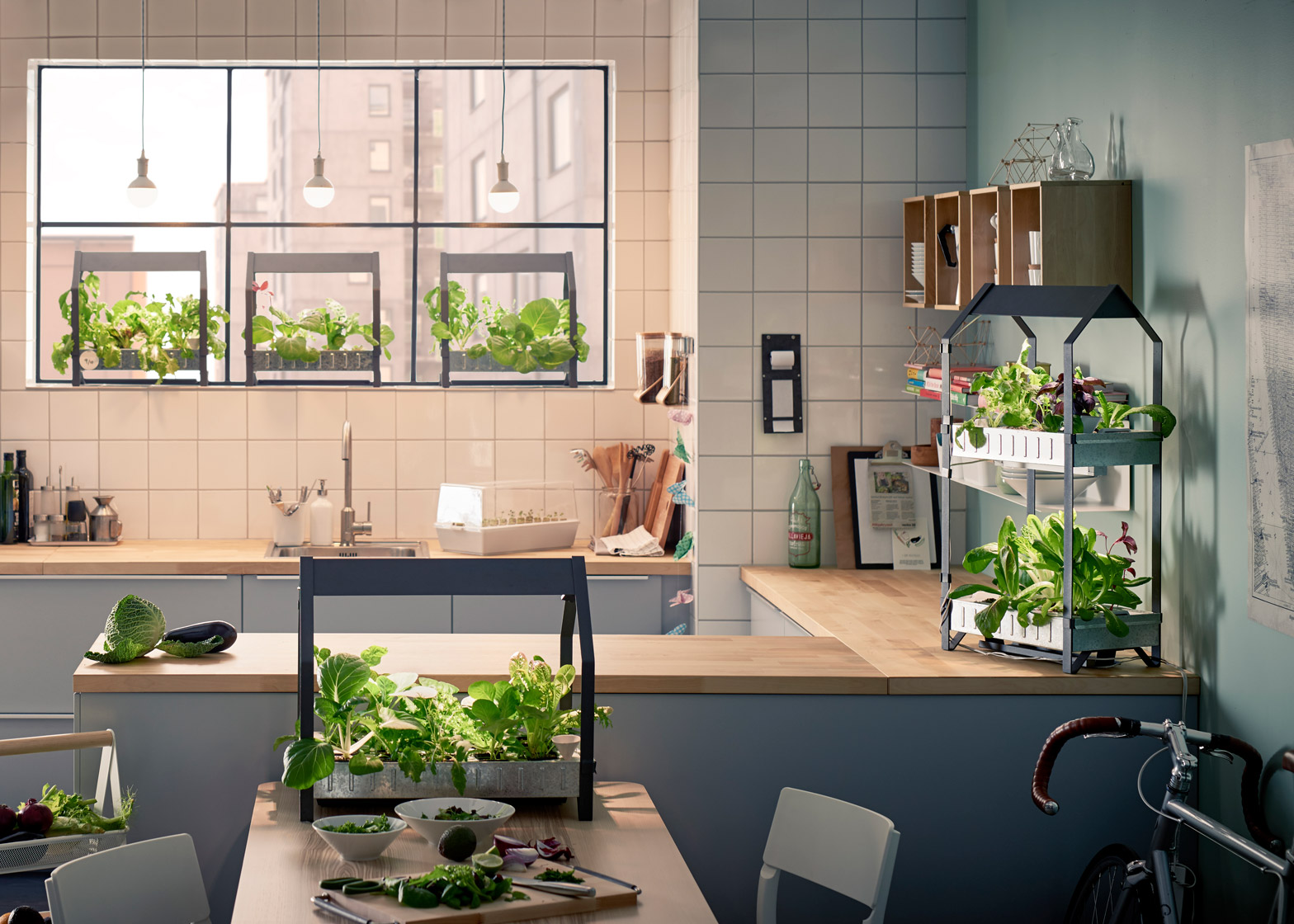 hydroponic-gardening-krydda-vaxer-series-kit-ikea-sustainable-homeware-design-interior-indoor_dezeen_1568_10